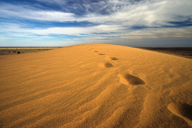 desert, footsteps