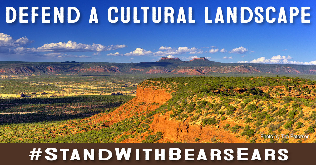 "The landscape of Bears Ears with the words ""Defend A Cultural Landscape"" on top and ""#StandWithBearsEars"" at the bottom"