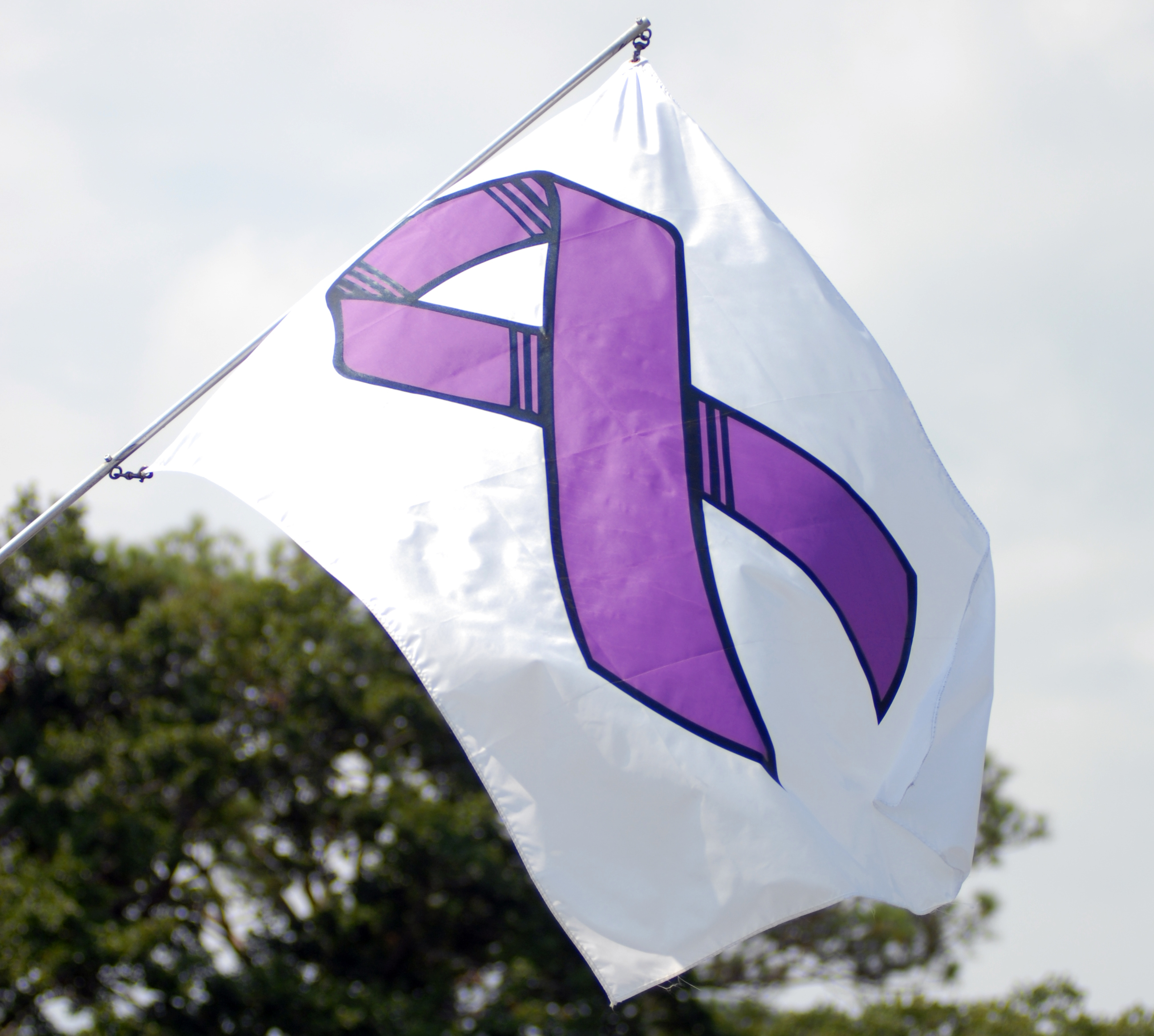 Purple ribbon for domestic violence on white flag waving outside