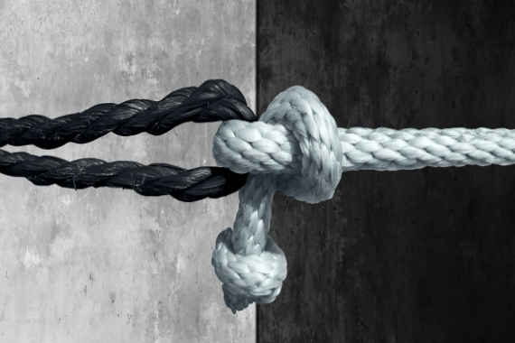 Black and white knots intertwined against a black and white background as if to represent racial unity